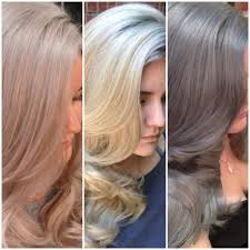 Exotic Colors by The Journey Champagne To True Blonde To Silver Hair Color