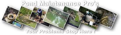 pond maintenance repair u0026 renovation services pond