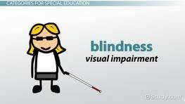 Blindness Chapter Summaries Education U0026 Characteristics Of Disability Videos U0026 Lessons