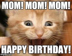 Mom Birthday Meme - happy birthday meme cats birthday memes pinterest birthday
