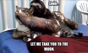 Dirty Sloth Memes - rape sloth rape sloth shhh let me take you to the moon sloth