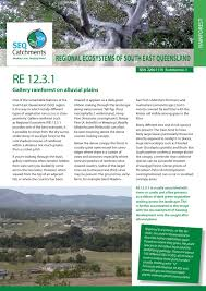 native plants south east queensland regional ecosystem 12 3 1 by healthy land and water issuu