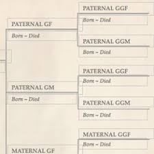 blank family tree template u2013 31 free word pdf documents download