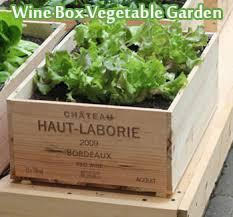 wine box vegetable garden