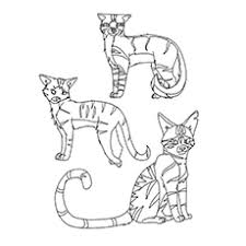 25 free printable warrior cats coloring pages