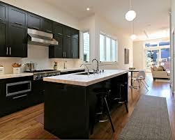 Black Shaker Kitchen Cabinets Black Shaker Kitchen Cabinets Home Design Ideas