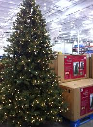 charming decoration 12 foot pre lit tree costco prices