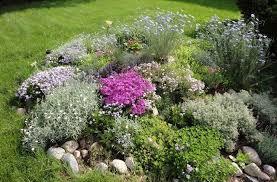 giardini rocciosi in ombra come costruire un giardino roccioso giardini orientali