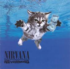 classic album covers now with cats