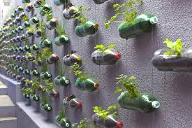 how to transform your wall or deck into hanging herb garden