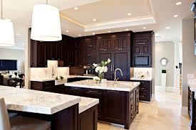 Dark Espresso Kitchen Cabinets  Traditional Kitchen Design - Kitchen cabinets espresso