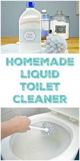 Acid For Bathroom Cleaning Best 25 Homemade Toilet Cleaner Ideas On Pinterest Homemade