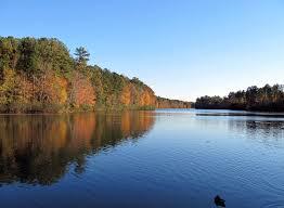 North Carolina lakes images Lake lynn raleigh north carolina wikipedia jpg