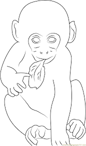 baby monkey eating leaf coloring page free monkey coloring pages