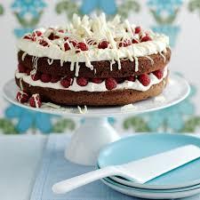 raspberry double chocolate cake birthday cake recipes red