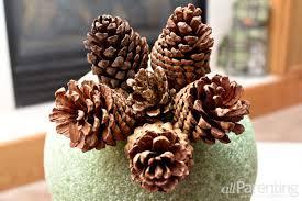 diy make a pretty pine cone topiary