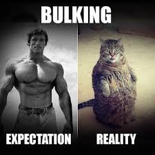 Expectation Vs Reality Meme - muscleblaze on twitter expectation vs reality meme gymmeme