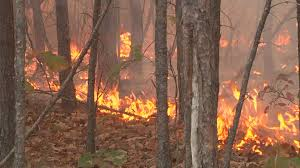 Wildfire Honey by 200 Hospitalized In Chattanooga Due To Wildfire Issues Wbir Com