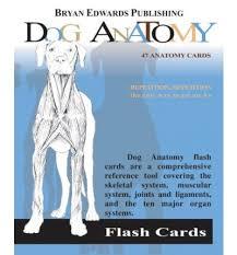 Dog Anatomy Book Dog Anatomy Flash Cards Flash Anatomy 9781878576170