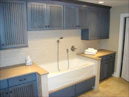 compact utility sink home design ideas and pictures