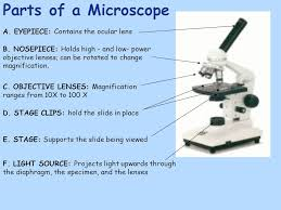 compound light microscope uses microscope used to study items too small to be seen with the