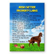 irish setter property laws fridge magnet new dog funny