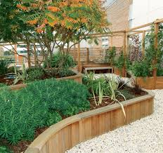Landscape Timber Bench Architecture Natural Garden With Green Plants And Wooden
