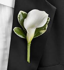 calla boutonniere white calla boutonniere in boston ma central square florist