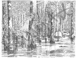 bharris art louisiana swamps collection pen set of 6