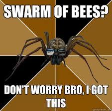 Spider Bro Meme - spiderbro memes quickmeme