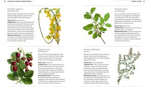 native plants of china the gardener u0027s companion to medicinal plants an a z of healing