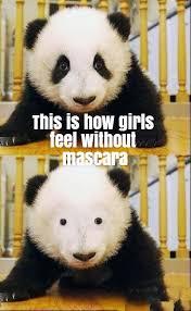 Panda Mascara Meme - how do you feel without makeup beauty pinterest makeup