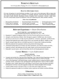 Updated Resume Examples by Resume Example Of Career Goals For Resume Format For Resume For