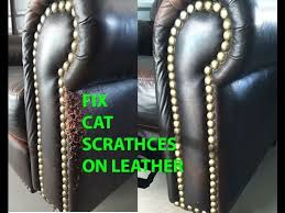 How To Patch Leather Sofa Repairing Leather Sofa Cat Scratches Www Energywarden Net