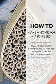 best 25 bee house ideas only on pinterest house insects mason