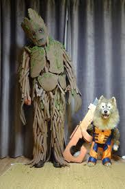 Man Halloween Costumes Good Boy U0027s Halloween Costumes Raise Shelter Awareness