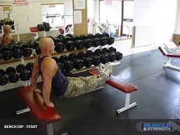 Triceps Bench Dips Bench Dips Exercise Guide U0026 Tips
