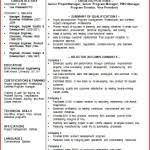 Resume Summary Examples For Software Developer by Resume Summary Example Objective Professional Experience Samples