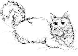 260 dessins de coloriage chat à imprimer sur laguerche com page 7