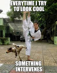 Martial Arts Memes - martial arts imgflip