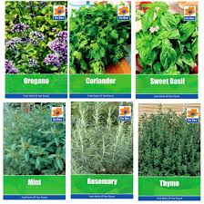 Indoor Herb Garden Kit Australia - indoor vegetable garden kit uk home outdoor decoration