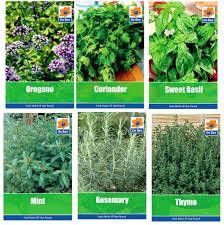 Indoor Herb Pots Window Box - window garden box herbs home outdoor decoration