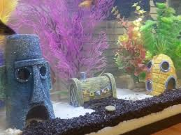 the 25 best aquarium ornaments ideas on fish tank
