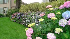 enhance the beauty of your home with a flower garden ideas