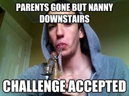 Funny Stoner Memes - sneaky stoner memes quickmeme