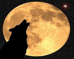 the wolf moon is coming soon