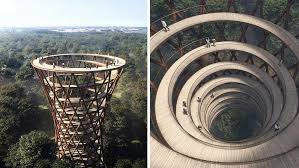 this breathtaking walkway lets you stroll above the trees in