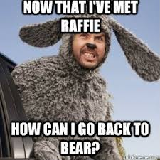 Wilfred Meme - angry wilfred tv shows pinterest tvs quick meme and meme