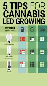 Cheap Led Grow Lights For Weed Best 25 Led Grow Ideas On Pinterest Led Grow Lights Marijuana