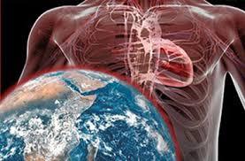 Human Anatomy Careers Cardiovascular Technologist Careers Allhealthcare Com